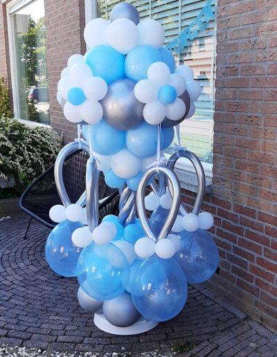 Tuttenballonnenboom jongen
